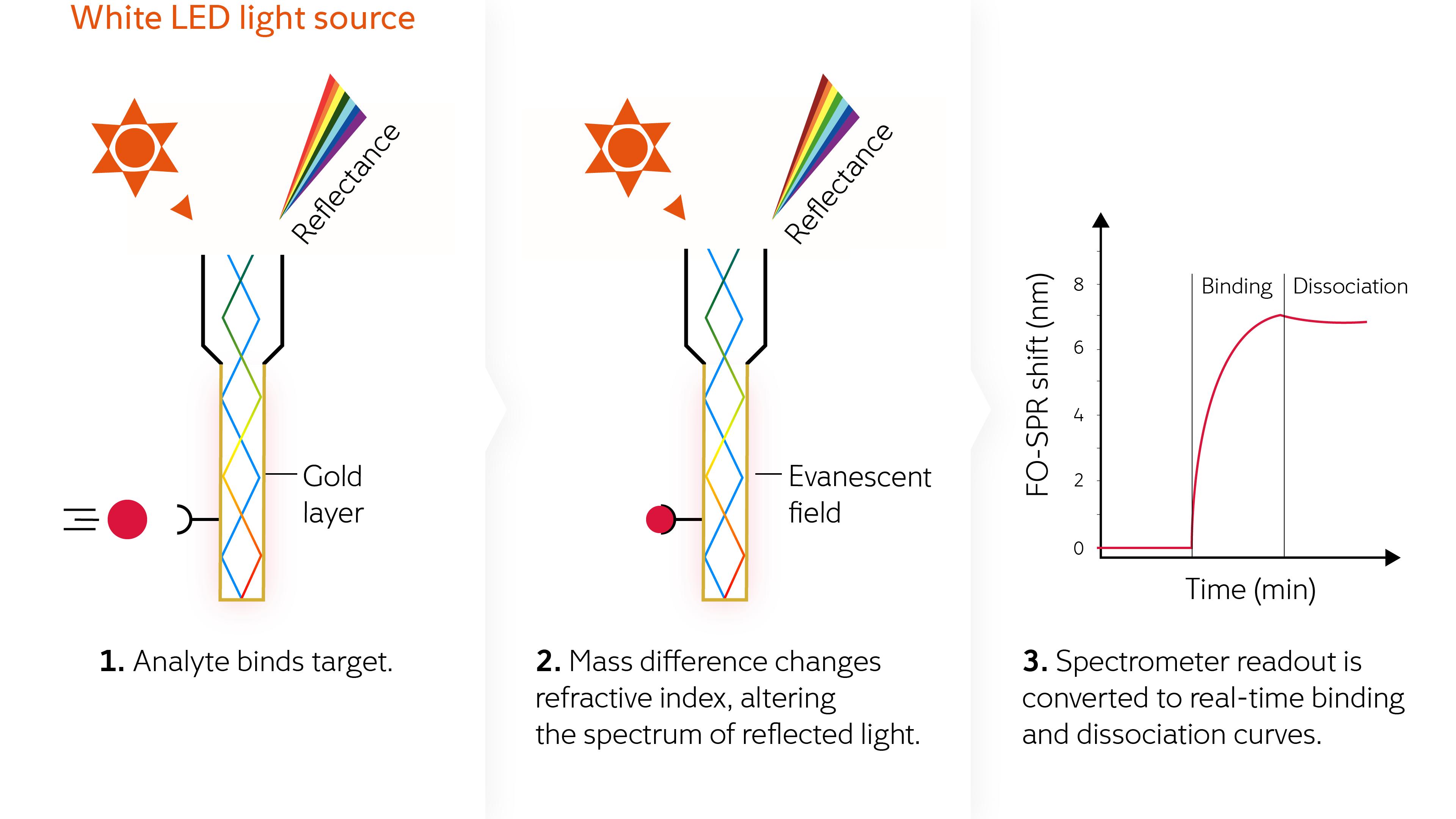 FOx BIOSYSTEMS fiber-optic surface plasmon resonance infographic
